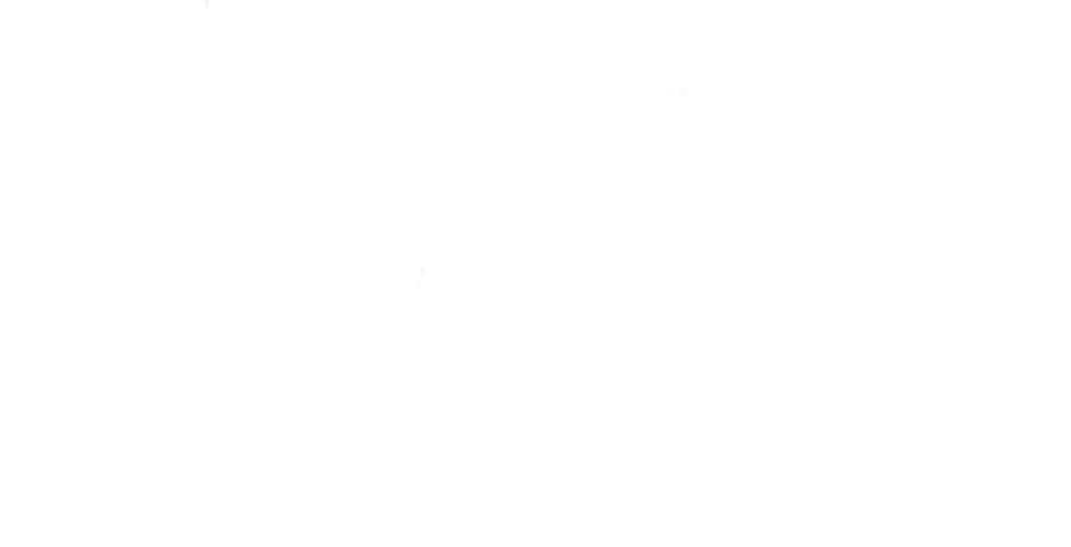 cropped-canarmor-logo-white.png