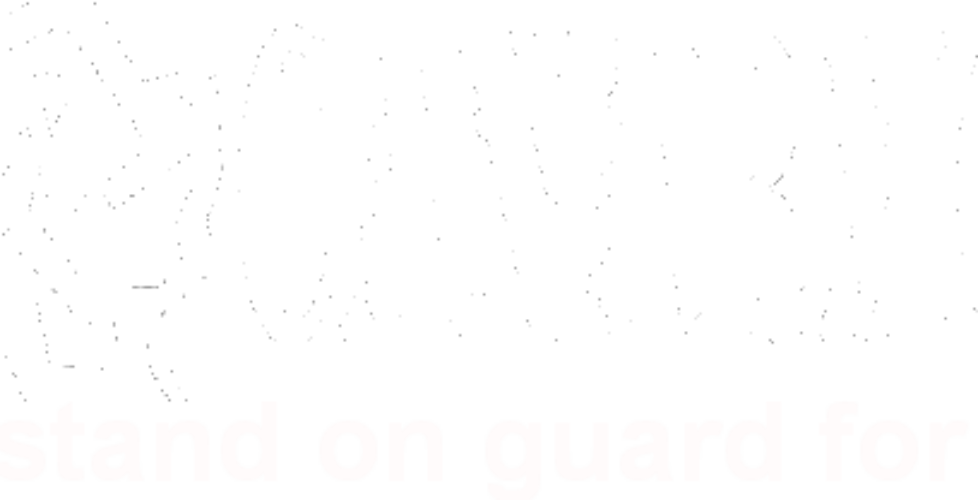 cropped-canarmor-1.png