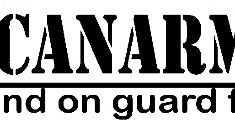cropped-canarmor-logo-1-1024x263